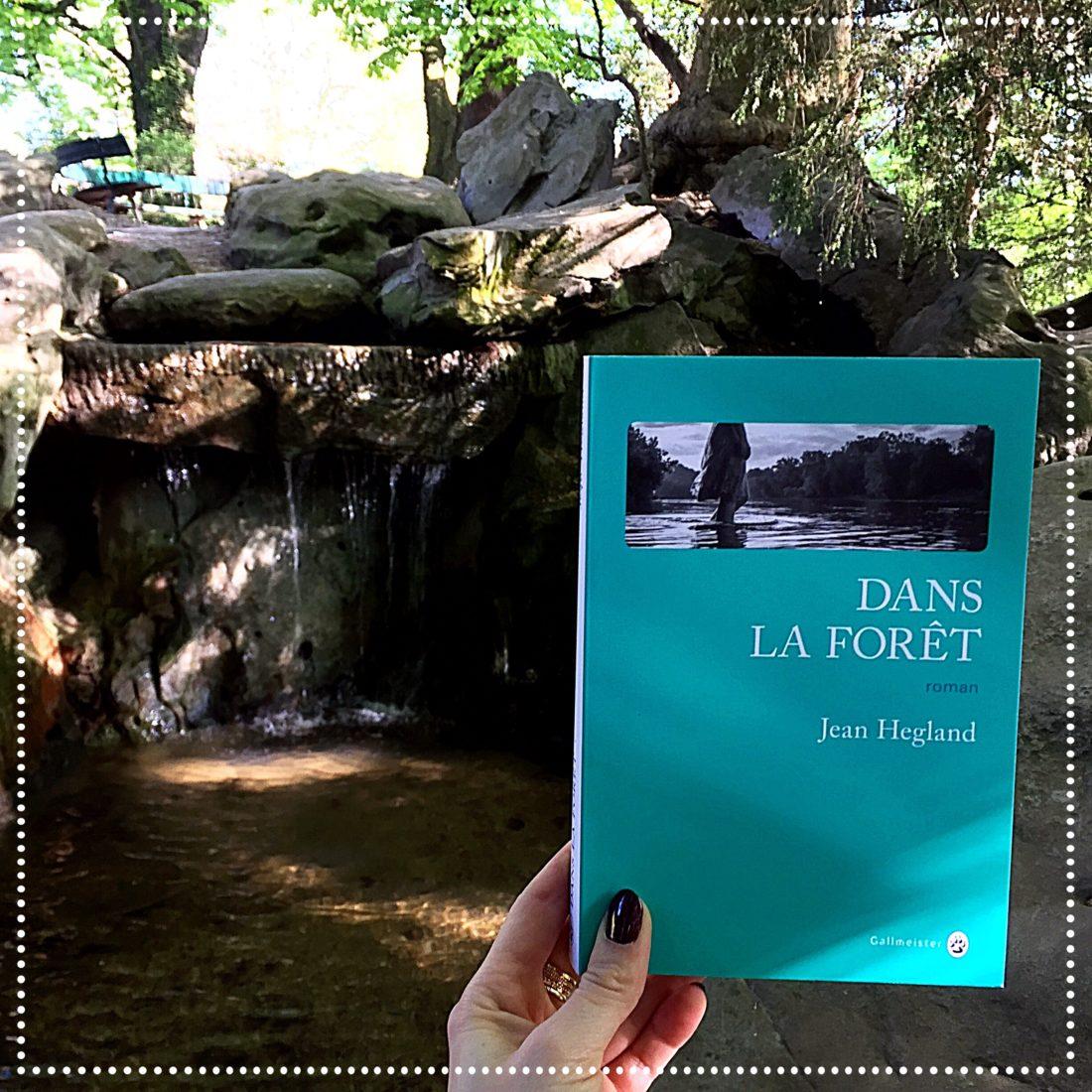 booksnjoy - dans la forêt - jean hegland
