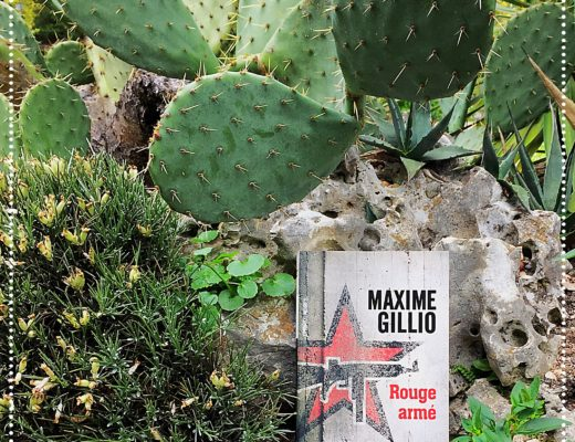 booksnjoy - rouge arme - maxime gillio