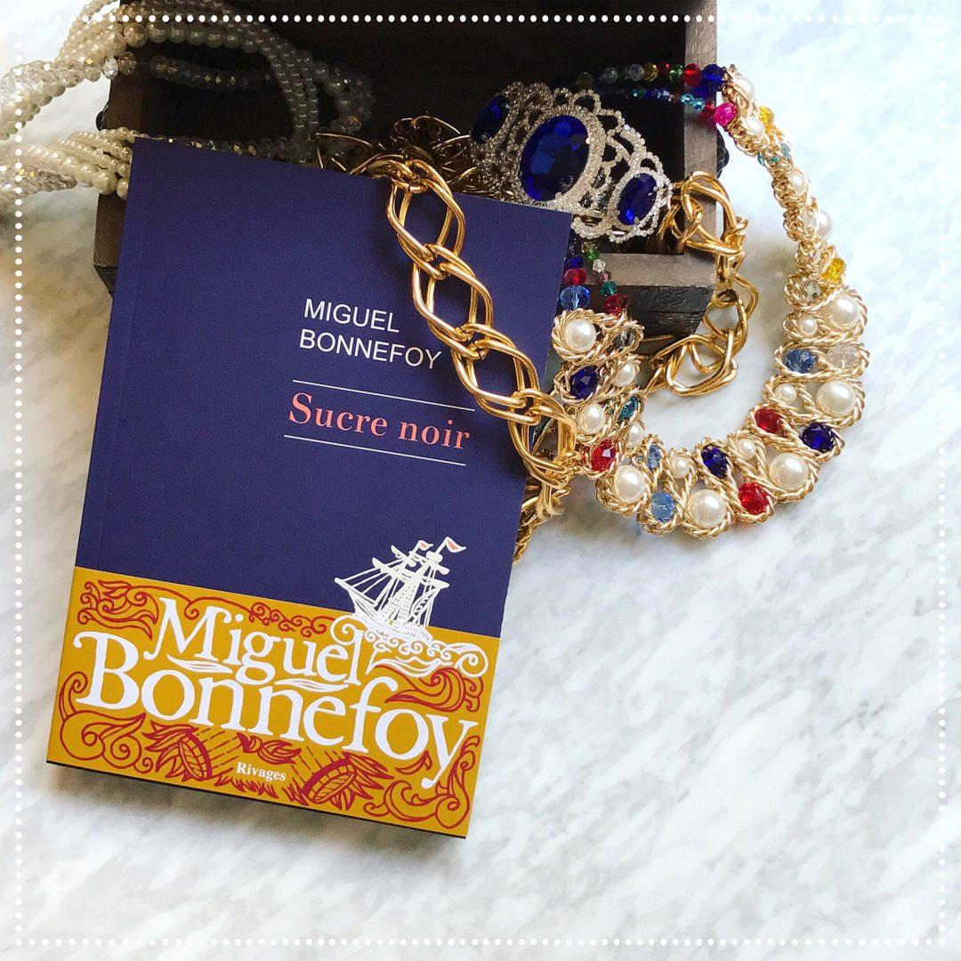 booksnjoy - sucre noir - miguel bonnefoy