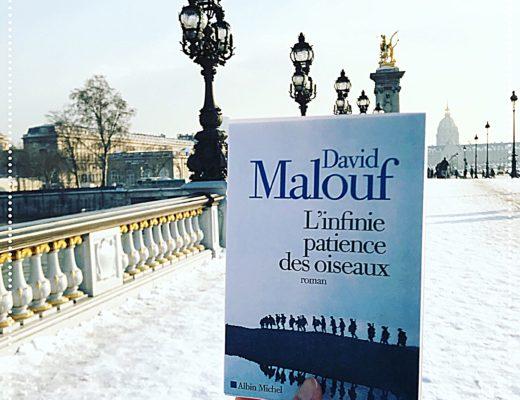 booksnjoy - l'infinie patience des oiseaux, David Malouf : rentrée littéraire d'hiver 2018 (#RL2018)