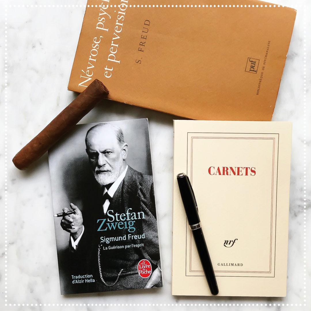 Sigmund Freud, Stefan Zweig : les explorateurs de la psyché humaine