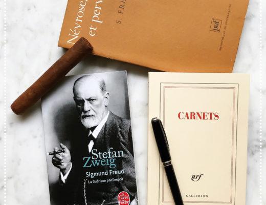 booksnjoy-sigmund-freud-stefan-zweig-classique-litterature-autrichienne-allemande
