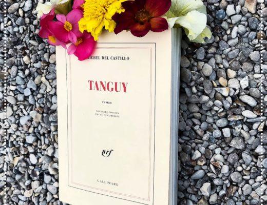 booksnjoy - Tanguy, Michel del Castillo : la perte des illusions (#chefd'œuvre)