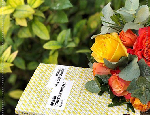 booksnjoy-apres-constantinople-sophie-van-der-linden-rentree-litteraire