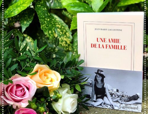 booksnjoy-amie-famille-jean-marie-laclavetine
