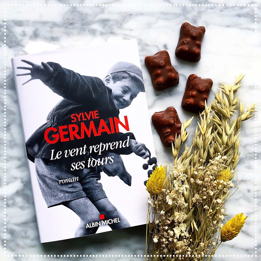 booksnjoy-le-vent-reprend-ses-tours-sylvie-germain-amitie
