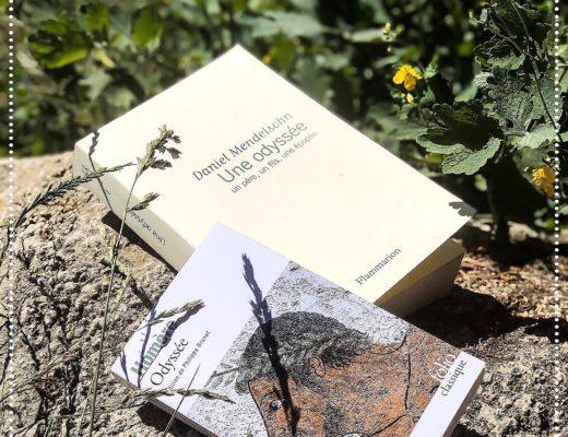 booksnoy-une-odysee-un-pere-un-fils-une-epopee-daniel-mendelsohn-mythologie-ulysse-homere