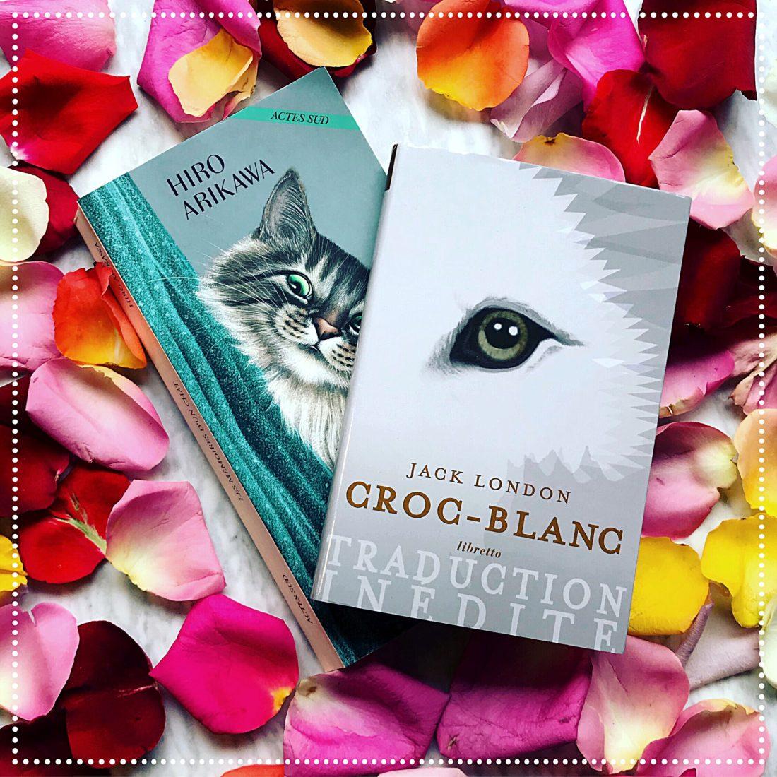 booksnjoy-noel-livres-fetes