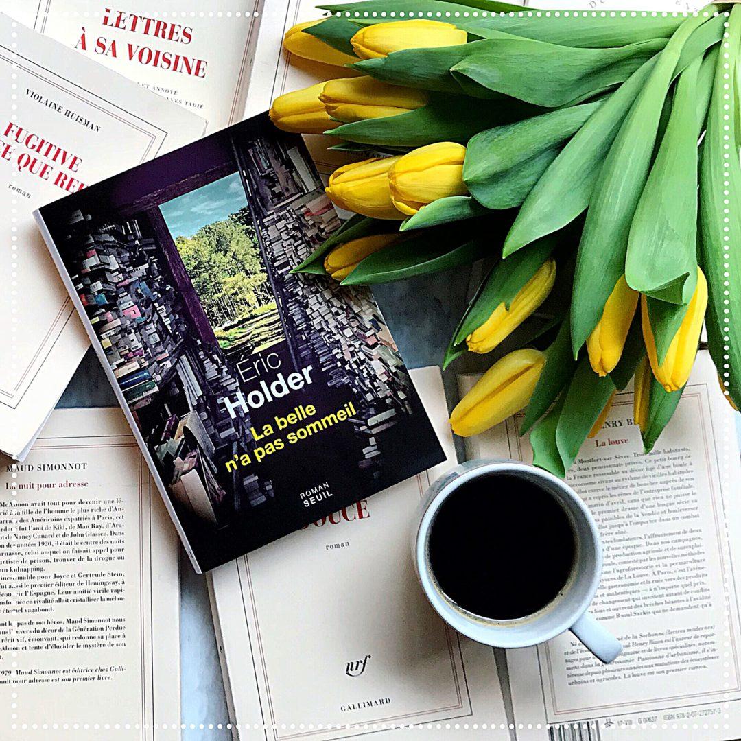 booksnjoy-La belle n'a pas sommeil, Éric Holder : rentrée littéraire d'hiver 2018 (#RL2018)