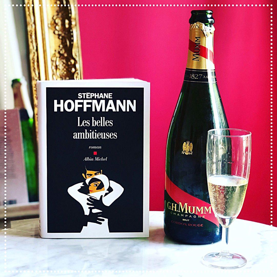 booksnjoy-Les belles ambitieuses, Stéphane Hoffmann : rentrée littéraire 2018-versailles-ambition-politique-aristocratie