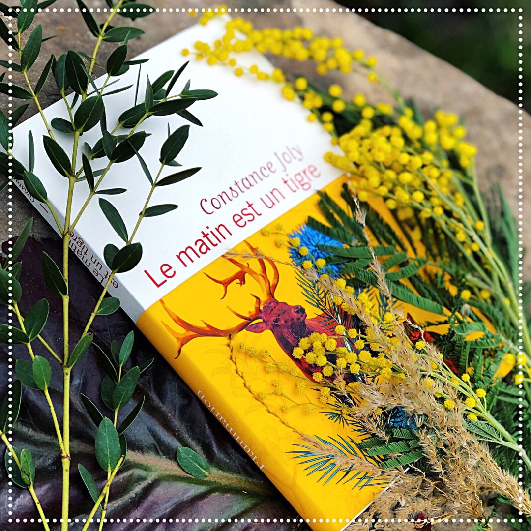booksnjoy-le-matin-est-un-tigre-constance-joly-rentree-litteraire