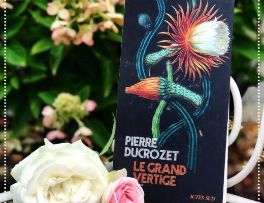 booksnjoy-le-grand-vertige-pierre-ducrozet