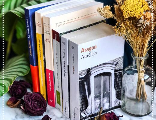 booksnjoy-histoires-damour-saint-valentin